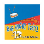 big-angry-fish-the-13-electric-turn-ons-cd