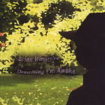Brian Windgrove - Dreaming I'm Awake - CD