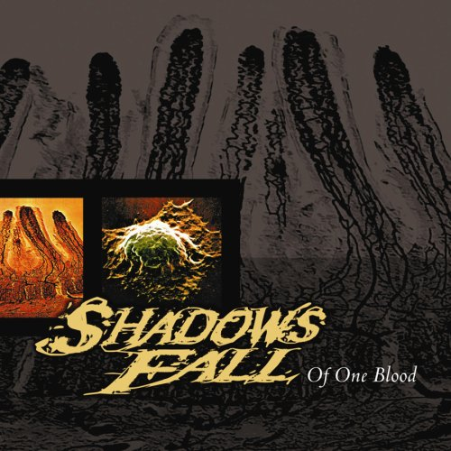 Shadows Fall – Of One Blood – CD